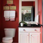 Zugraveala rosie combinata cu obiecte sanitare albe