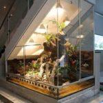 acvariu plasat original sub scara pentru o ambianta eleganta