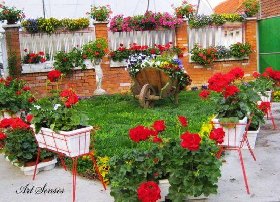 Gradina cu jarniere cu muscate rosii