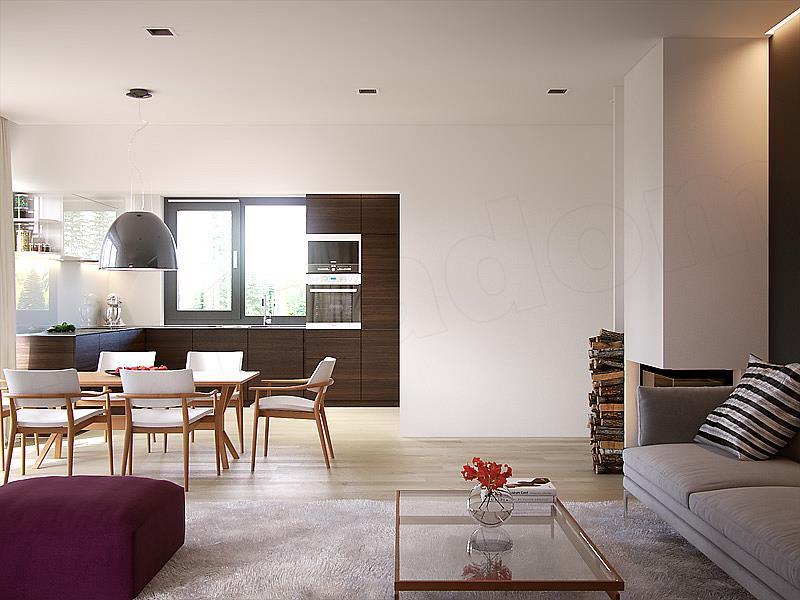 Living cu bucatarie open space