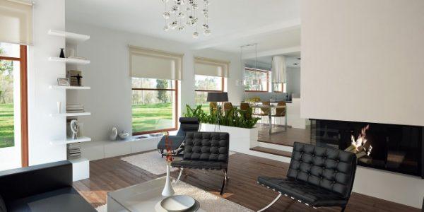 Living open space minimalist