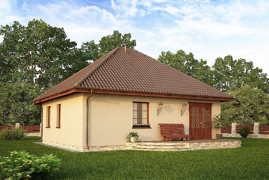 Model de casa doar cu parter cu 2 intrari