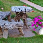 Masa cu scaune din radacini de copac