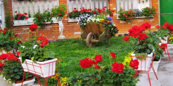 Suporturi flori pentru gradina