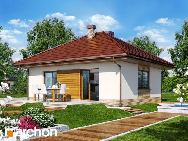 Proiect casa cu 1 dormitor