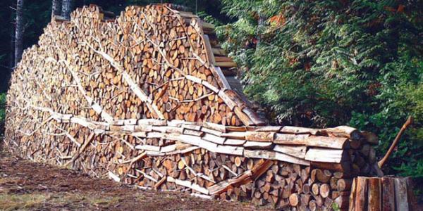 Aranjare lemne de foc