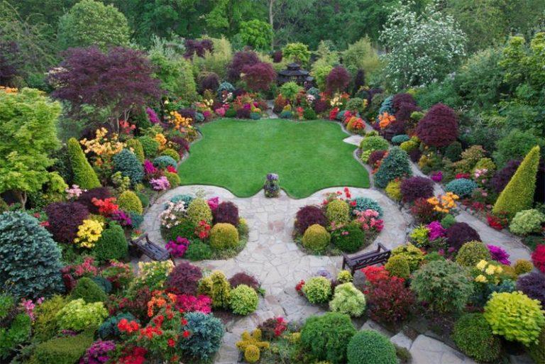 Arbusti ornamentali colorati