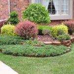Arbusti ornamentali gradina