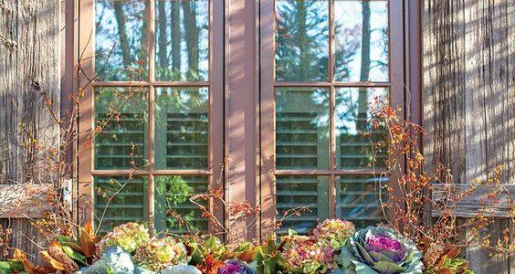Glastra cu varza ornamentala si dovleci