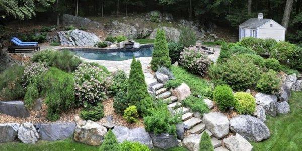 Gradina cu lac si arbusti