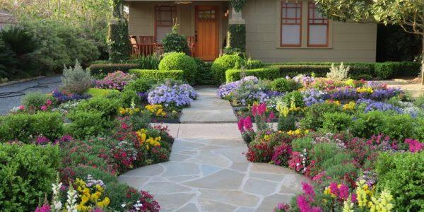 Gradina din fata casei cu flori multicolore