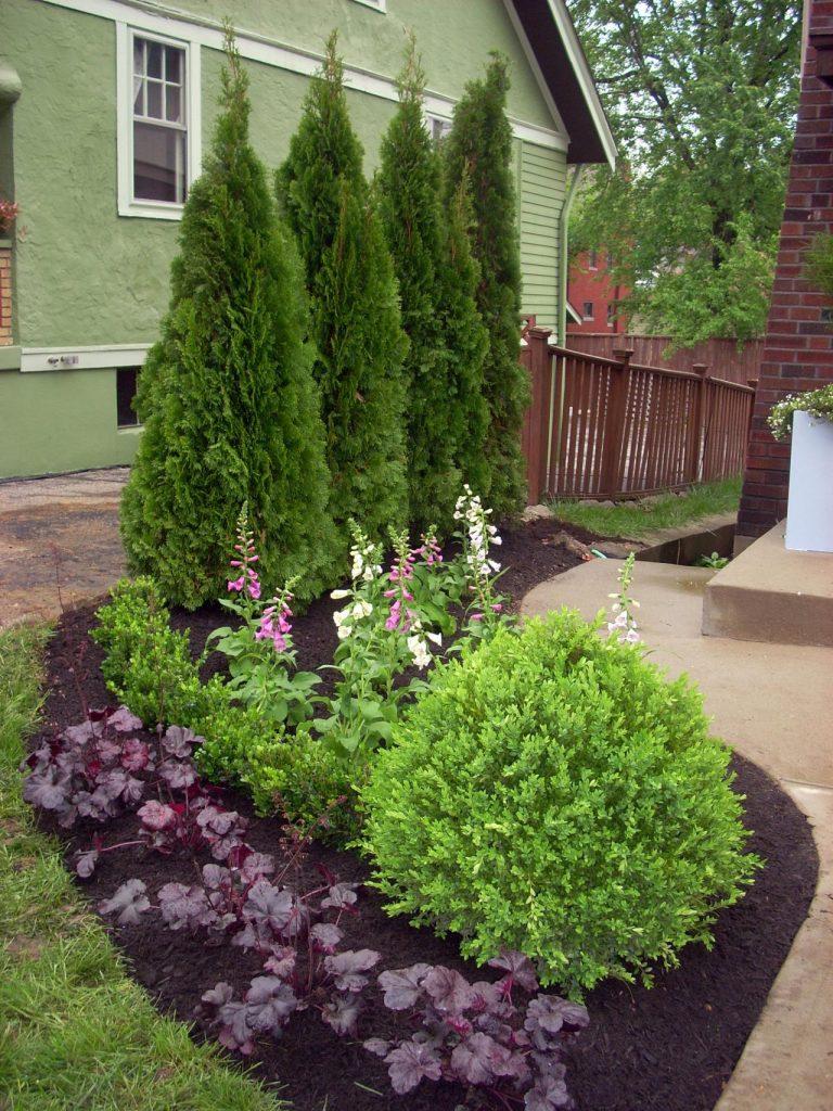 Gradina mica cu arbusti