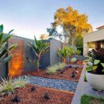 Gradina moderna cu plante ornamentale