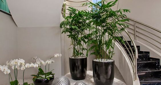 Gradina sub scari cu flori si plante ornamentale