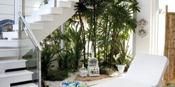 Gradina sub scari cu multe plante