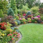 Gradina superba cu arbusti si flori