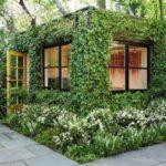 Pavilion de gradina cu plante agatatoare