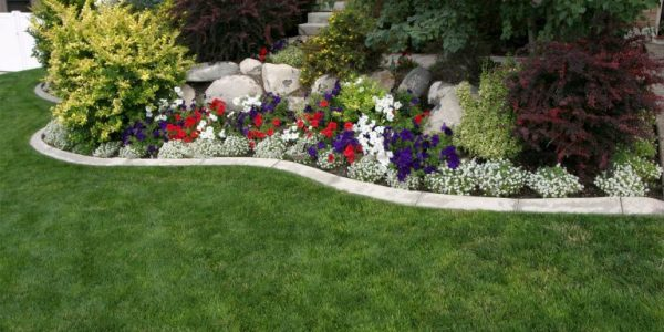 Rond gradina cu flori si arbusti