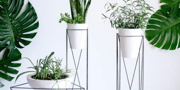 Suporturi flori cu forme geometrice