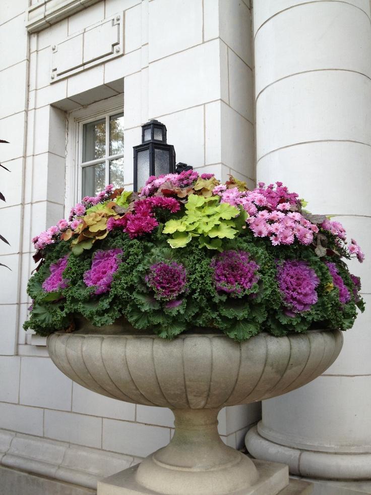 Vas cu varza ornamentala su flori