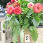 Vas de flori decorat cu franghie