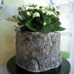 Vaza flori albe din trunchi de copac