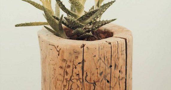 Vaza mica din trunchi de copac