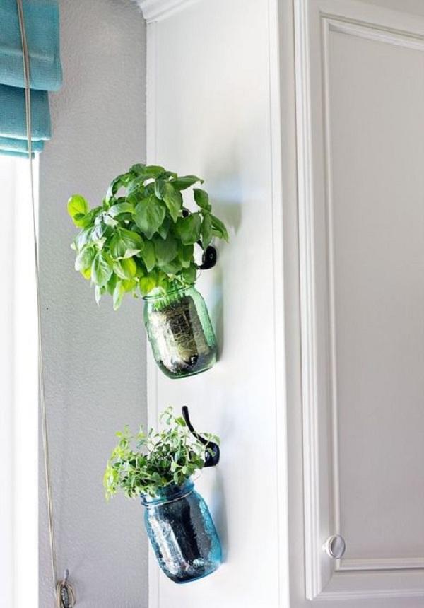 Borcane sticla cu plante aromatice