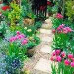 Decor gradina cu multe flori