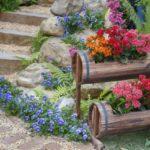 Decor gradina cu flori colorate