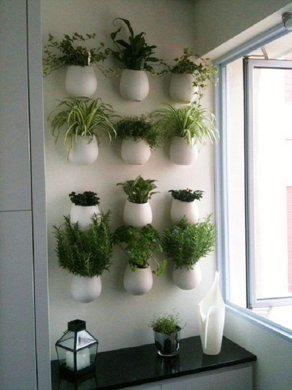 Decor plante aromatice bucatarie