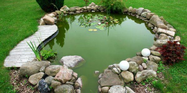 Lac de gradina cu ponton