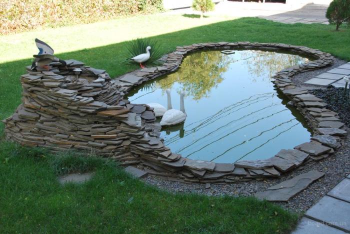 Lac gradina cu pasari