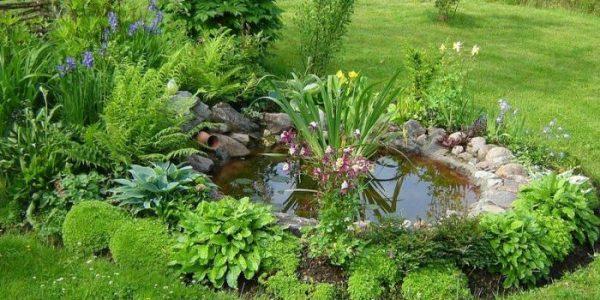 Lac mic cu verdeata
