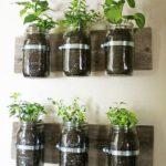 Legume si plante aromatice crescute in bucatarie