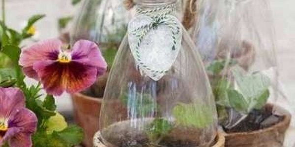 Mini sera din cu sticle de plastic