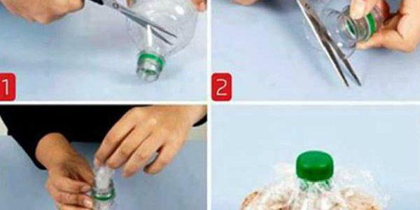 Punga cerelae cu dop din sticla de plastic