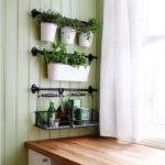 Vase albe cu plante aromatice bucatarie