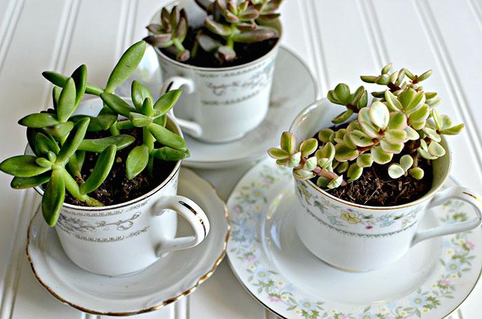 Vase de flori din cani de cafea