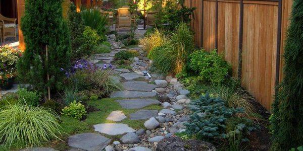 Alee gradina cu plante decorative si piatra