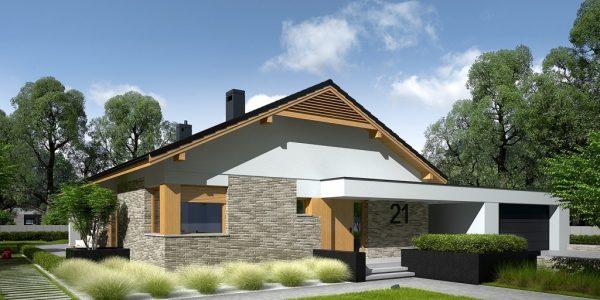 Casa moderna cu garaj dublu