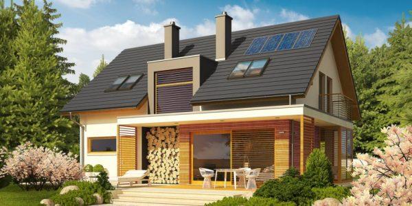 Casa cu magazie de lemne