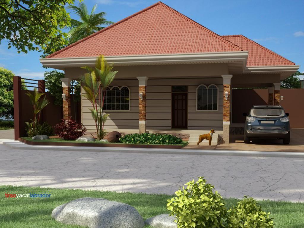 Casa parter cu garaj deschis