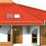 Elevatie casa cu fatade placate cu caramida