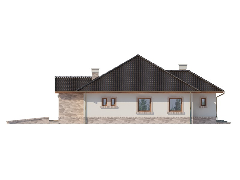 Elevatie spate casa eleganta cu garaj